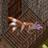 狐のワラジ