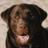 @JasonPeringer Profile picture