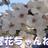 櫻花ちゃんねる💙 (@ouka_channel)