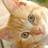 cat_photo