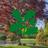sheffieldpark&garden