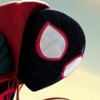 Peter Parker (@PeetrParkour )
