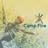Camp Fire 🏕🔥