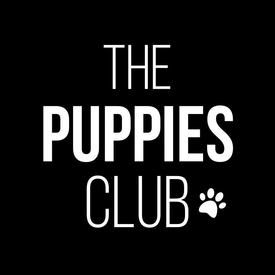 The Puppies Club (@thepuppiesclub )