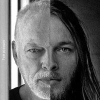 David Gilmour (Fan)