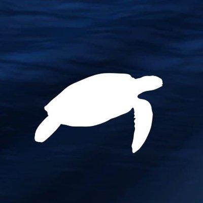 """Plastic Free _n Twitter: """"Prima una tartaruga con una cannuccia nel naso,  poi una balena piena di buste di plastica nello stomaco. Ora un pesce  intrappolato in una mascherina. Tanti, troppi animali"""