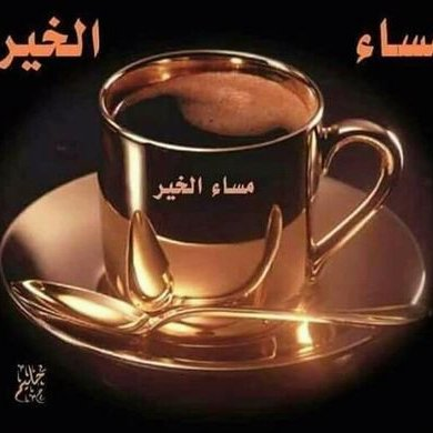Saker Ali