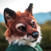 Shirefox the Ring barer🔜 BLFC and FWA