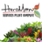 Heroman Services Plant Company