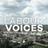 Labour Voices
