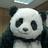 Panda_cm_normal