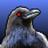 Tritonusraven avatar