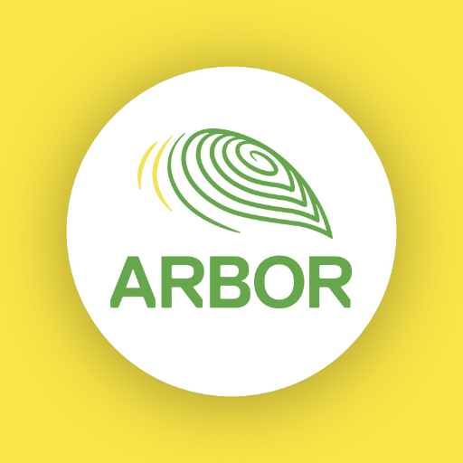 Year 2 | The Arbor School