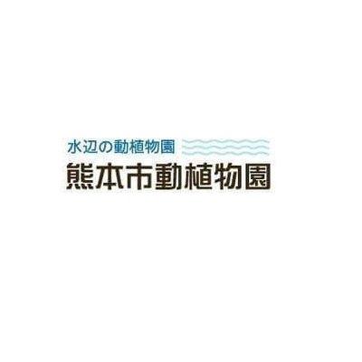 熊本市動植物園(公式) (@kumamotocityzoo)   Twitter