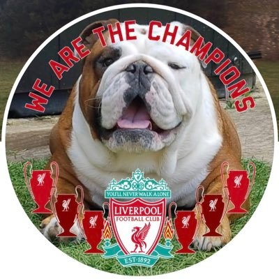 Axl (@axlbulldog1) Twitter profile photo