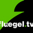 fluegel.tv team