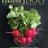 Edible Jersey