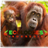 Ecolodges & Ecosafari indonesia