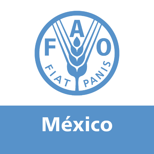 @FAOMexico