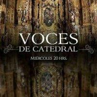 Voces De Catedral Oficial