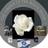 @IsraelandUSA Profile picture