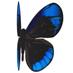 Bludelta Profile Image