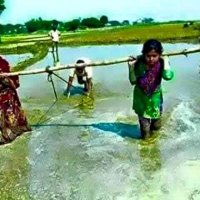 Indian farmer mitra