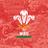 ウェールズ代表チーム (@WalesTeamRWC19) Twitter profile photo
