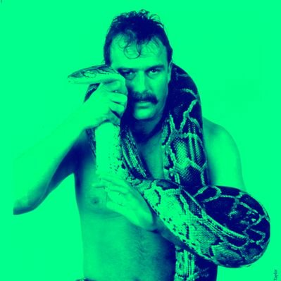 Twitter profile picture for Jake Roberts