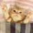 @cat_douga1