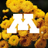 MN Invasive Terrestrial Plants & Pests Center