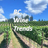 @BCWineTrends