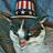 FrankieFace15's avatar'