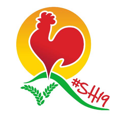 Afbeeldingsresultaat voor stoppelhaene 2019 logo