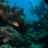 scuba360adventures