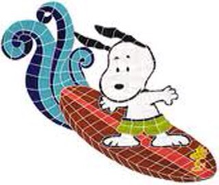Surfing Snoops