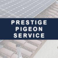Prestige Pigeon Service
