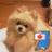 スメラギ イヤサカ❗️イヤサカ〜❗️ (@a_sawama)