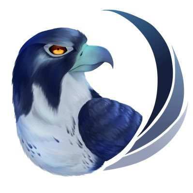 The Blue Falcons