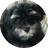 @HAVAPUP Profile picture