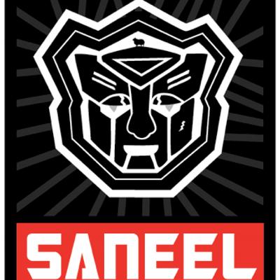 @saneel