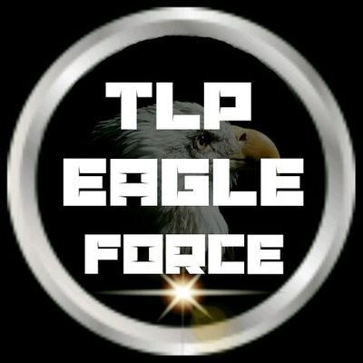 EAGLE FORCE (OFFICIAL)