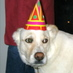 Cosmo_B-Day_Hat_bigger.jpg
