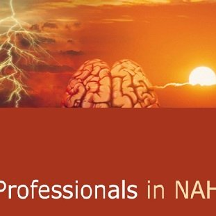 Professionals in NAH | Social Profile