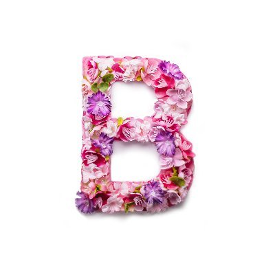 Blossom (@BlossomHacks )