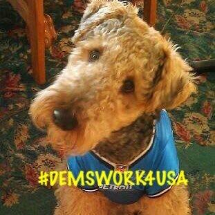 A proud native Detroiter #Liberal #GrammyofTwo #Democrats #MomofFour  #WelshTerrier #twinmom #RESIST #Indivisible #DemsWork4USA @DemsWork4USA