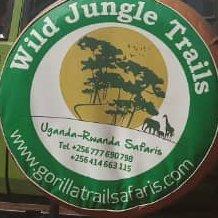Wild Jungle Trails