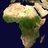 AfroActivistA