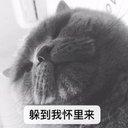Tutu - @YifeiWang18 - Twitter