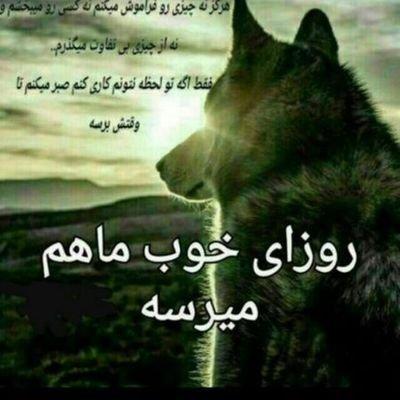 @binam63